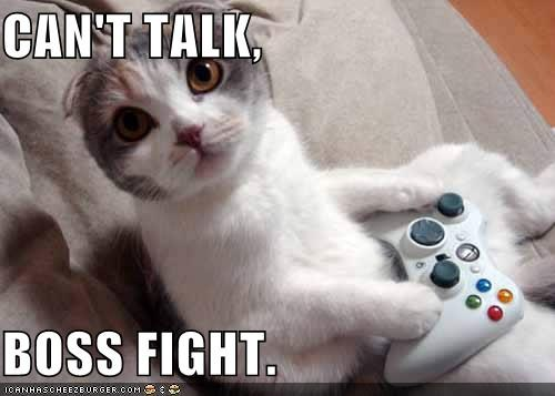 boss fight cat1