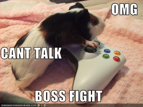 boss fight hamster