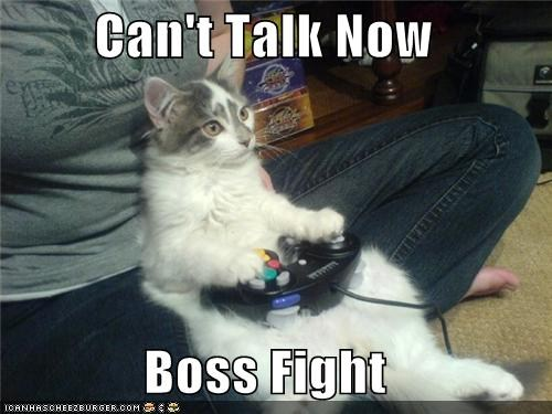 boss fight cat2