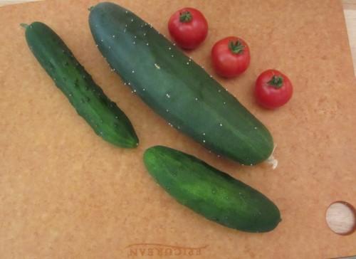 072613 cuc tomato