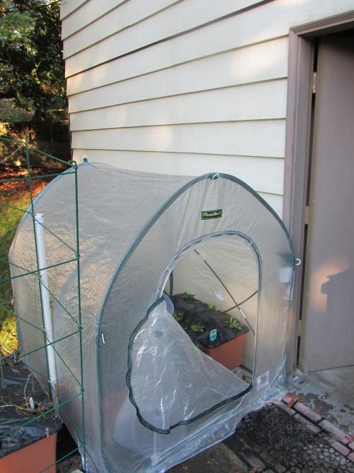 102213 cold frame exterior