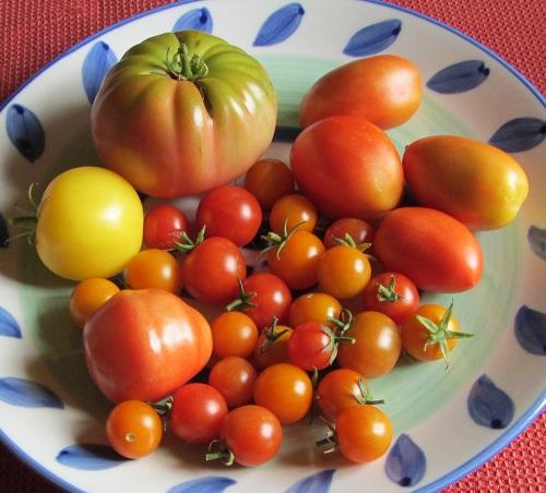 150924 harvest